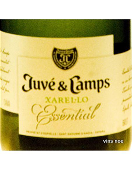 Juve camps essential xarel·lo brut reserva - JUVÉ_Y_CAMPS_ESSENTIAL_XAREL·LO_BRUT_RESERVA-E