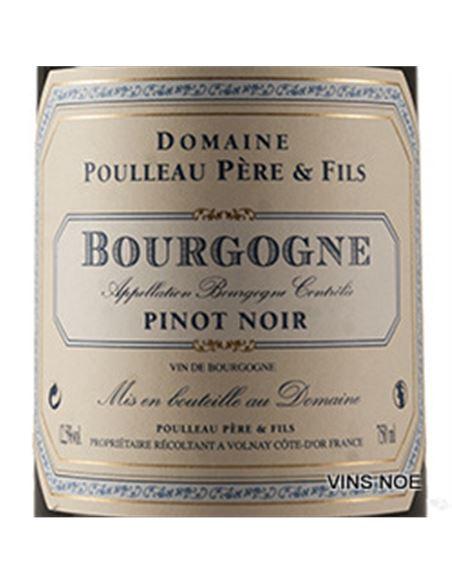 Poulleau bourgogne pinot noir 2018 - DOM_POULLEAU_BOURGOGNE_PINOT_NOIR-E