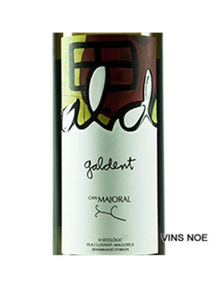 Galdent - Galdent-E