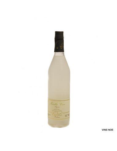 Kuhri liqueur de menthe - KUHRI MENTA
