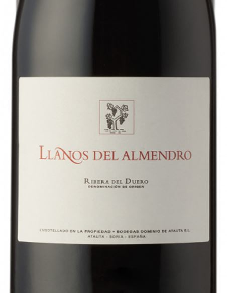 Los Llanos del Almendro - LlanosdelAlmendro_VinsNoe_etiqueta