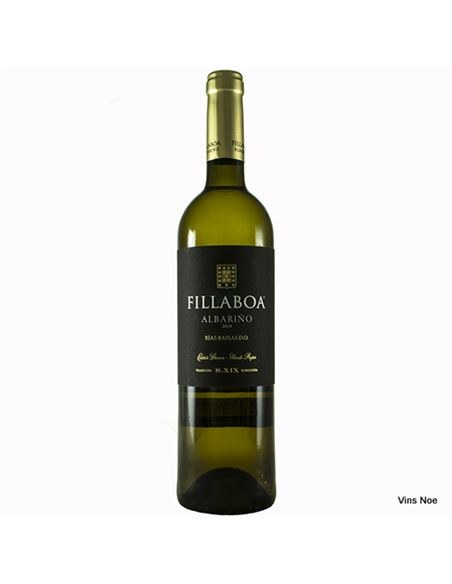 Fillaboa - FILLABOA
