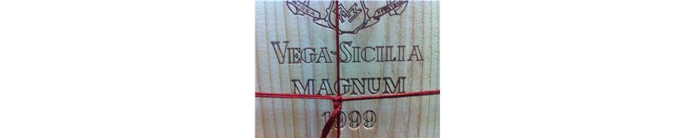Vino en magnum | formato para compartir desde 15 euros